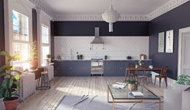 Modern kitchen interior. Stock Photography