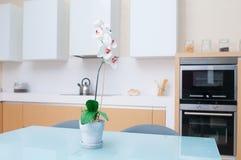 Modern kitchen in modern house Stock Photo