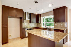 Modern kitchen room with matte brown cabinets and shiny granite Royalty Free Stock Photos