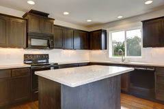 Modern kitchen with stained cabinets. Stock Photos