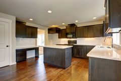 Modern kitchen with stained cabinets. Stock Images