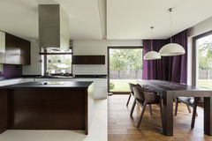 Modern kitchen with steely furniture. And nice view Stock Images