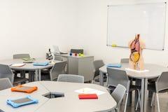 Modern klaslokaalbinnenland, met rondetafels Anatomiemodel en de witte raad op de achtergrond Royalty-vrije Stock Foto's