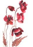 Modern konst av den röda vallmo blommar, vattenfärgmålning Royaltyfri Foto