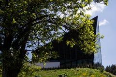 Modern kontorsbyggnad i natur bak ett träd fotografering för bildbyråer