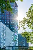 Modern kontorsbyggnad med träd och solljus blossar Royaltyfri Foto
