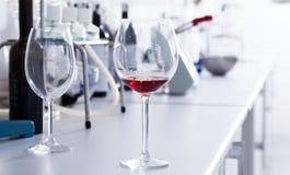 Modern laboratorium van wijnmakerij Het controleren van zuurheid van wijn en organo royalty-vrije stock foto's