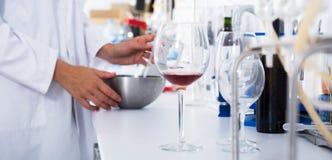 Modern laboratorium van wijnmakerij Het controleren van zuurheid van wijn en organo stock afbeeldingen