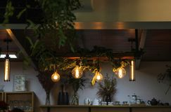 Modern lamp on ceiling. Six light bulbs hanging on the wooden ceilling royalty free stock photos