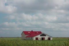 Modern landbouwbedrijf Royalty-vrije Stock Afbeelding