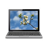 Modern laptop with apple blossoms wallpaper Stock Images