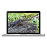 Modern laptop with frog on screen Stock Photos