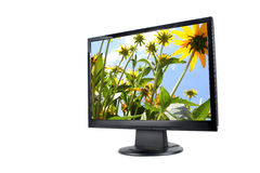 Modern lcd monitor isolated Royalty Free Stock Image