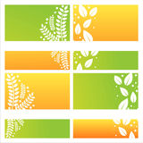 Modern leaves backgrounds Royalty Free Stock Photo