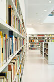 Modern library. Inside modern library in natural light Royalty Free Stock Photo