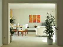 Modern living an dining room with double door Royalty Free Stock Image