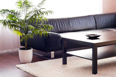 Modern living room. Leather sofa, cowhide, design and looks well thought out Royalty Free Stock Images