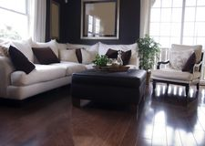 Modern Living Room. Design wth hardwood flooring Royalty Free Stock Images