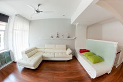 Modern living room. With white sofa, wooden floor and golf trophy on the rack. Photo taken with fisheye lens Royalty Free Stock Images