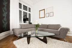 Free Modern Living Room Stock Photography - 8870072