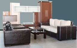 Modern living room of an apartmanet. Modern living room with skin sofa, glass table and wardrobe Royalty Free Stock Images