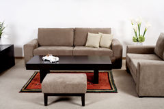 Modern living room with classic couch. Neat and clean modern living room with classic couch Royalty Free Stock Images