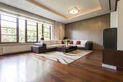 Modern living room. Design with brown parquet Stock Images