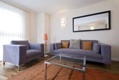 Modern living room with grey sofa stock photo