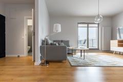 Modern living room and hallway. Modern living room with big hallway and bathroom doors open stock photos