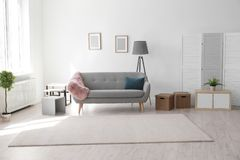 Modern living room interior with comfortable sofa. And beautiful carpet stock photo