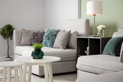 Modern living room interior. With comfortable sofa Stock Photo