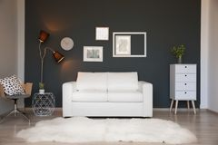 Modern living room interior with stylish sofa. And carpet royalty free stock photos