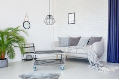 Modern living room with lamp. Grey blanket on sofa with cushions against wall with poster in modern living room interior with metal table, lamp and plant Royalty Free Stock Image