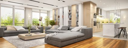 Modern living room with large sofas and modern kitchen