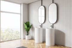 Modern ljus badruminre Designspeglar vektor illustrationer