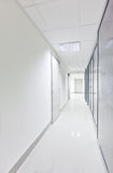 Modern long corridor with glass doors Royalty Free Stock Image