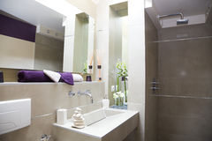 Modern Luxurious bathroom Stock Images