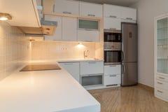 Modern luxurious kitchen, stainless steel appliances. Modern luxurious kitchen with stainless steel appliances Royalty Free Stock Photos