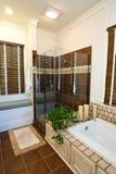 Modern luxury bathroom royalty free stock image