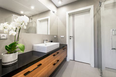 Modern luxury bathroom Stock Photo