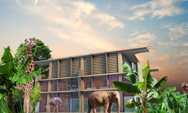 Modern mansion. With exotic animals in the garden stock images