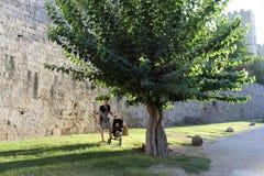 Modern med behandla som ett barn i slott Arkivfoto