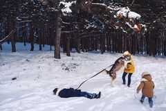 Modern med dottern och sonen har gyckel som spelar med en hund i en vinter, parkerar Begreppet av aktiv tidsfördriv i vintern royaltyfri bild