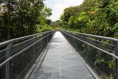 Modern metallbro över djungeln Royaltyfri Fotografi