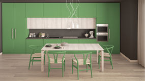 Modern minimal green kitchen with wooden floor, classic interior Royalty Free Stock Images
