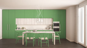 Modern minimal green kitchen with wooden floor, classic interior Royalty Free Stock Photography