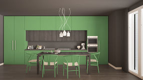 Modern minimal green kitchen with wooden floor, classic interior Stock Photography