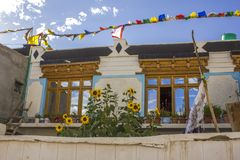 A Modern National Tibetan House and Sunflowers royalty free stock images