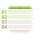 Modern nature design template infographics Royalty Free Stock Photo