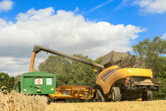 Modern New Holland combine harvester cutting crops Stock Image